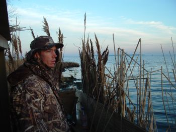 The season dates and limits for the 2006-2007 N.C. waterfowl seasons have been set.  The duck season is in three sections beginning Oct. 4.