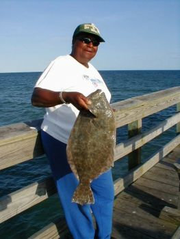 Summer Flounder were at the heart of much debate during discussion of the Magnuson-Stevens Sustainable Fisheries Act.