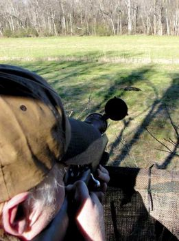 Rifles with excellent optics are important when hunting wild hogs from stands, especially around open fields where tuskers will root around for food.