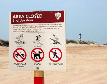 National Park Service rangers posted signs to disallow ORV driving at three beaches of the Cape Hatteras National Seashore that are popular with anglers each spring, including the Point.