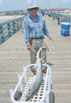 Veteran pier angler Bob Davis wheels a king mackerel to the Ocean Crest pierhouse to be weighed.
