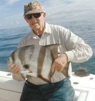Spadefish can reach weights of 12 pounds in N.C. waters, although the average weight is 4 to 6 pounds.