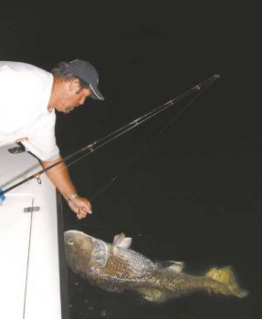 Capt. Charles Brown grabs the leader to land a big red drum after a long battle.