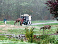 QDMA will hold a fund-raiser golf tournament at Crooked Creek GC at Fuquay-Varina.