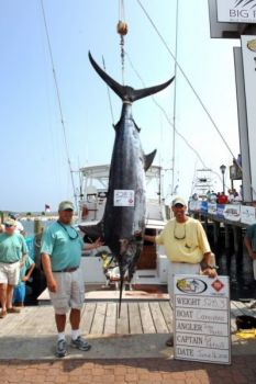 The Cape Carteret-based Carnivore, which caught this 528-pound blue marlin last week, was named winner of the Big Rock Blue Marlin Tournament on Tuesday after tournament officials disqualified an 883-pound blue marlin caught by the Hatteras-based Citation for a rules violation.