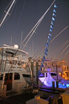 Flags were flying by the dozen after a white-marlin blitz Aug. 30.
