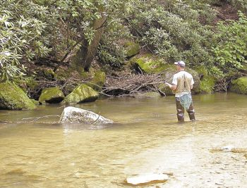 Fall prime time for brooks browns carolina sportsman for Roaring river fishing hours
