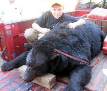 Thomas Story and the black bear from Nov. 12