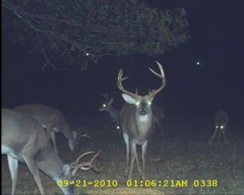 The photo shows the big 9-point that Ruffin later harvested