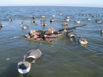 Duck Hunting Blind For This Hunting Gear Forum