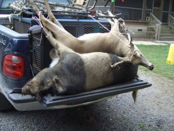 Will new legislation affect big game hunting in 2011?