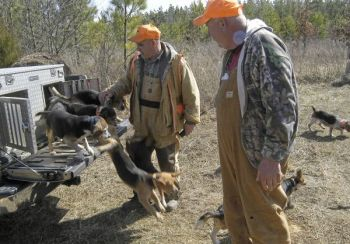 Hunting with dogs is under scrutiny where it concerns private property rights