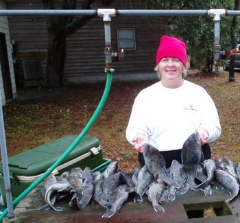 Donna Mooneyham getting ready to start cleaning a good catch of black sea bass