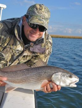 Red drum will be on the table for game-fish protection during a joint-legislative study commission�s work.