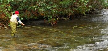 A fisherman works the Bradley Fork in the Great Smoky Mountains National Park.