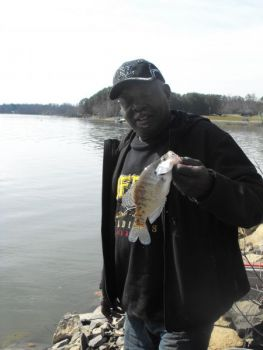High Rock Lake fishing is turning on, with crappie showing up in numbers.