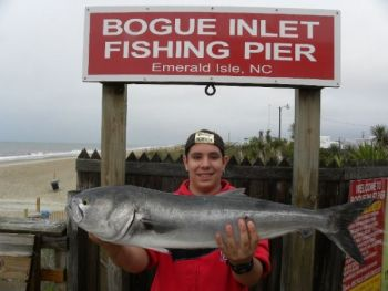 A happy angler displays a Hatteras bluefish he caught April 30 at Bogue Inlet Pier.