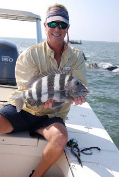 Sheepshead are often referred to as saltwater panfish, though like this one caught by Johnny Spitzmiller, they may be many times the size of their freshwater counterparts.