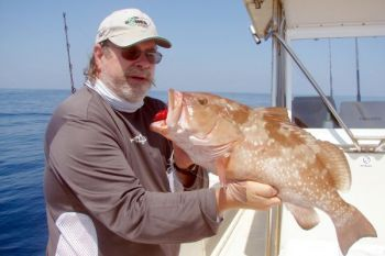 Red grouper like this one -- along with gags, scamps, beeliners, triggers and black sea bass -- are being caught in 15 to 25 fathoms of water off Atlantic Beach.