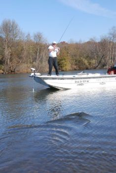 Find the best summertime striper fishing on lake norman for Kerr lake fishing hot spots