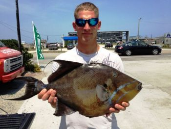 Ben Peterson with his 10-pound, 11-ounce queen triggerfish that was just approved as the new state record. The fish was weighed at East Coast Sports in Surf City.