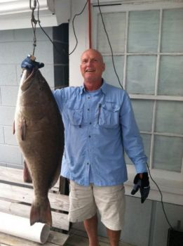 David Abernathy's huge gag grouper was certified by NCDMF as the first-ever state record for that species.