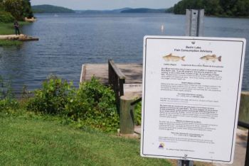 Fish-consumption advisory signs dot the shoreline at Badin Lake, which will be drawn down 15 to 20 feet this fall to remove or cap PCBs at two sites.