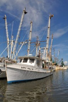The Coastal Fisheries Reform Group is pushing the N.C. Marine Fisheries Commission to ban otter trawls on shrimp boats in North Carolina waters.