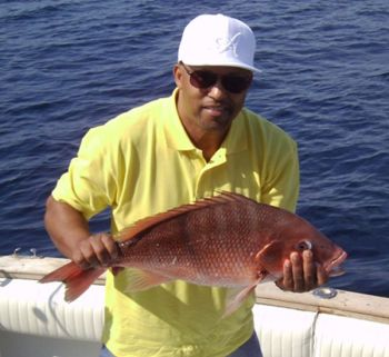 The NCDMF wants to examine the carcasses of red snapper caught during the two upcoming 3-day recreational seasons. It has set up freezers at locations along the coast to receive the carcasses.