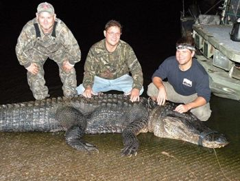 Dan Grubbs, Jonathan Hopkins, and guide Brad Taylor pose with Hopkins' 13-foot-2, 684-pound gator taken from the upper reaches of Lake Marion on Sept. 20.