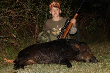 Any rifle used for deer hunting is suitable for killing wild hogs, as long as shot placement is paramount.