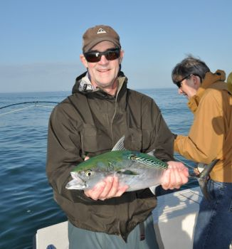 False albacore have returned to the beaches off Cape Lookout, rounding out an outstanding mixed bag of species biting from the cape back up the Neuse River to New Bern.