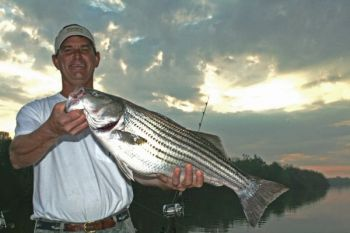 Tips on fising for big striped bass on Lakes Moultrie and