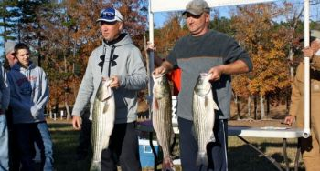 These three nice stripers gave David Woodward of Charlotte (left) and Robert Steele of Lexington a winning, 33-pound catch in the Tarheel Striper Club tournament on High Rock Lake in mid-November.