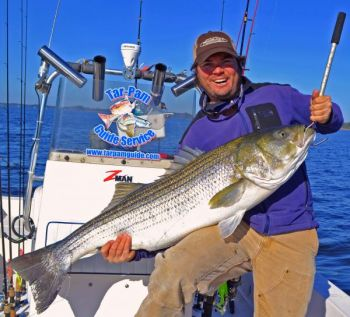 Richard Andrews caught this striper, believed to weigh near 50 pounds, in the Pamlico Sound on Dec. 14.