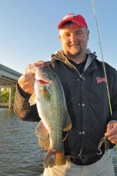 Guide Jeff Thomas shows off a nice Jordan Lake bass caught off the riprap near a bridge