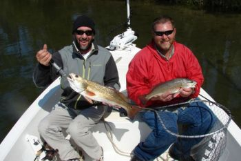 Jeff Saunders (left) and Capt. Allen Jernigan caught these two puppy drum from the same school in a creek off the New River.