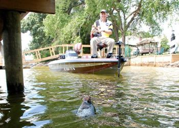 Tips for catching crappie out from under lake wylie docks for Kerr lake fishing hot spots
