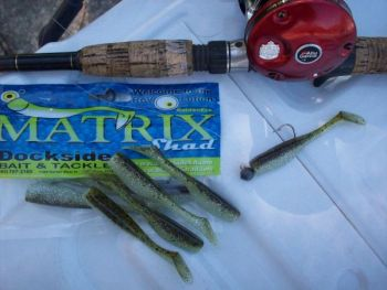 The Matrix Shad provide great fish-catching ability because of its soft, action-packed body.
