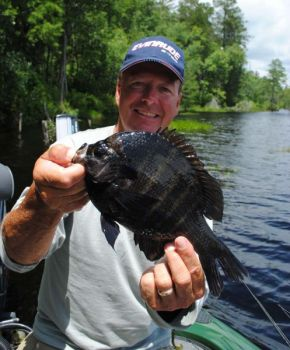 The author almost likes catching big bream more than big bass; sometimes, it's a toss up.
