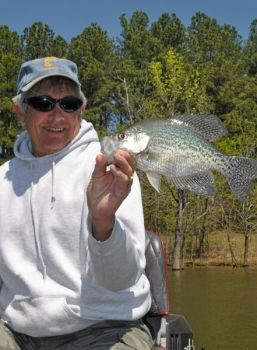 Crappie are biting just about any lure anglers can throw at the Yadkin River lakes.