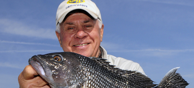 Black sea bass catch limits increase for 2013.