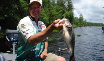 When Davy Hite needs to search for bass schooling on blueback herring, he opts for a soft jerkbait like a Trigger-X Drop Dead Minnow.