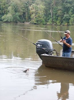 Fall for flathead catfish at blewett falls lake north for Kerr lake fishing hot spots