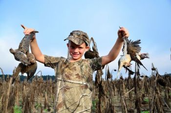 SCDNR and the U.S. Forest Service have scheduled a youth dove hunt near Abbeville on Sept. 7.