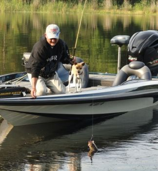 Fall bass fishing at shearon harris can make you forget for Kerr lake fishing hot spots