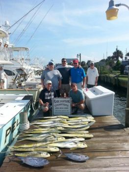 Plenty of gaffer-sized dolphin have made Gulf Stream fishing out of Morehead City a pleasure over the past week or two.