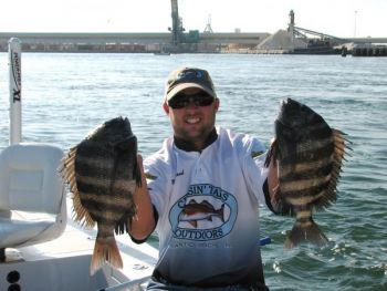 Sheepshead fishing has been excellent around bridges, docks and the State Port wall in Morehead City.