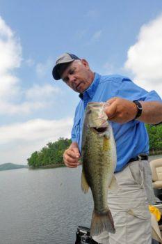 Badin s burning bass bite cooler clearer deeper water for Badin lake fishing