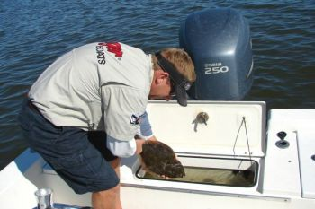 Guide Rick Patterson has been putting plenty of flounder into his livewell in the waters around Swansboro.
